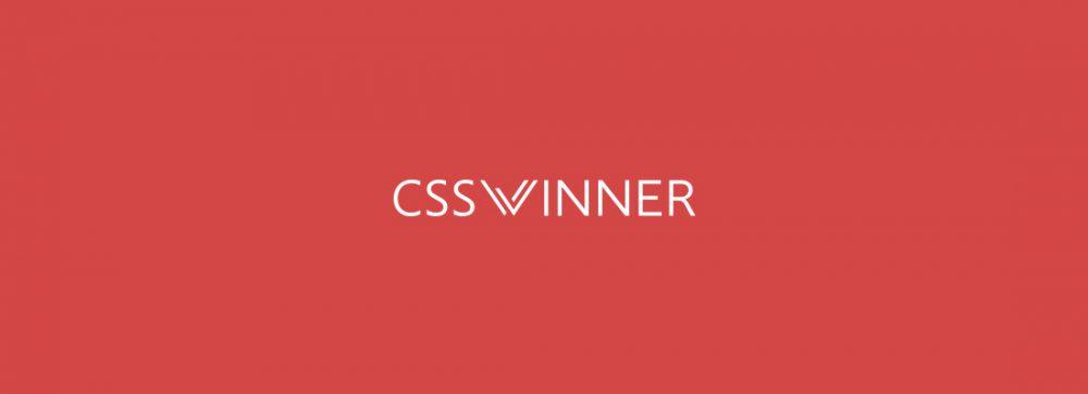 css-winner-profiles